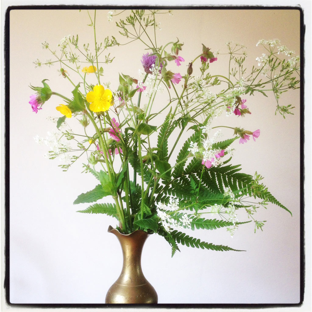 fresh summer flowers from the garden of The Pink House Lulworth