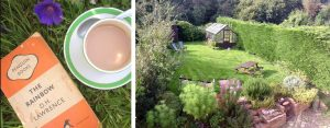 cottage garden at The Pink House Lulworth holiday home accommodation