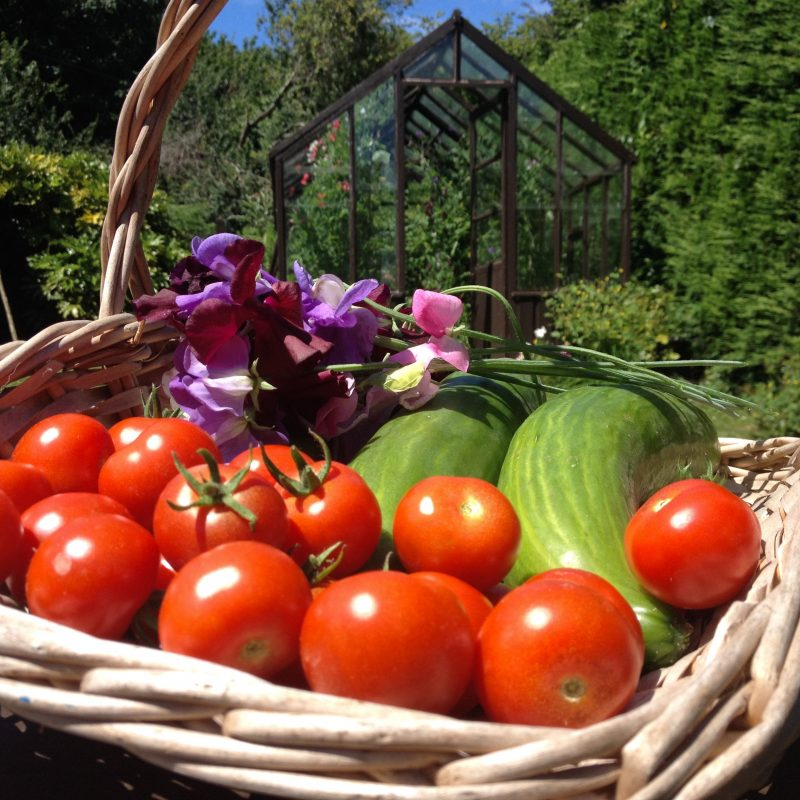 garden produce at The Pink House Lulworth