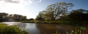 river frome by Holme Bridge Dorset